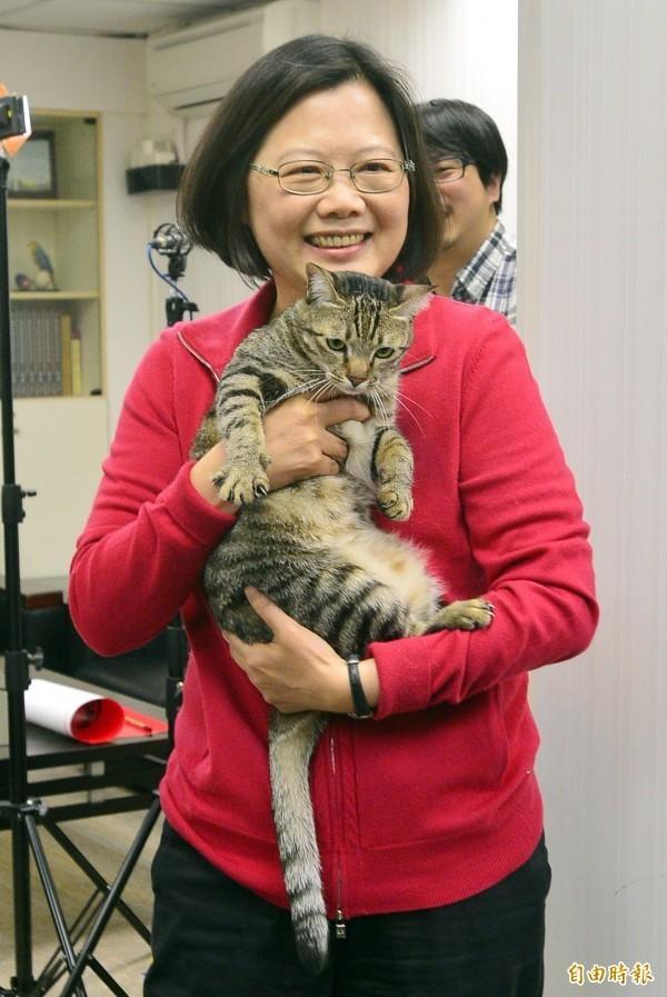 蔡英文愛貓形象讓人印象深刻。(資料照,記者王藝菘攝)