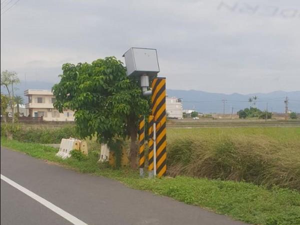 宜蘭路邊有一支測速照相的鏡頭被前方大樹擋住。(圖擷取自臉書「爆廢公社」)