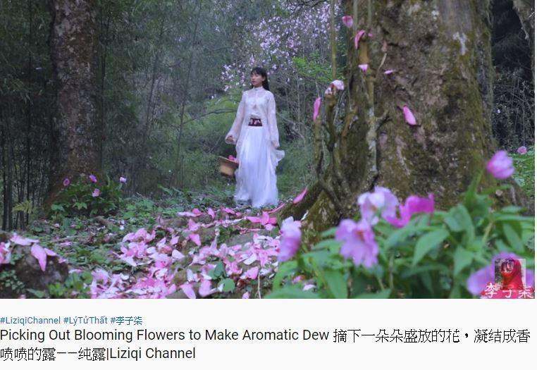 李子柒身穿有著精緻刺繡的雪白薄紗漢服,遊走在林地間,古風倩影可說是相當唯美,宛如是電視劇一樣。(圖擷取自Youtube_李子柒 Liziqi)