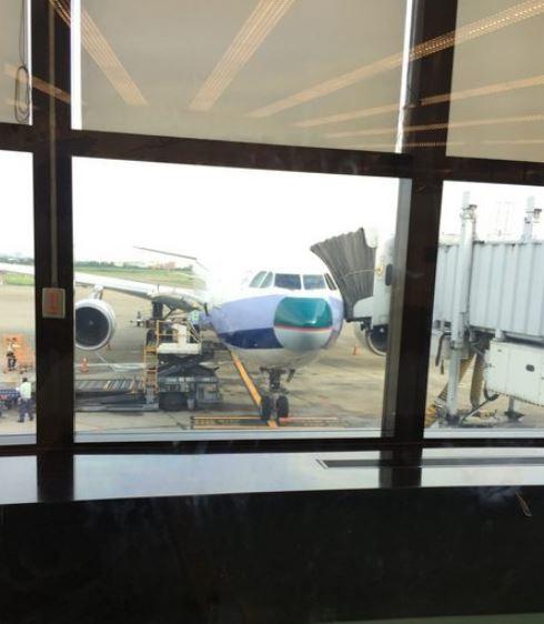 不少網友稱,裝上國泰航空機鼻的華航班機,有種莫名的喜感。(圖擷自PTT)