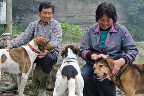 狗來富代養家庭與狗。(圖由中華民國保護動物協會提供)