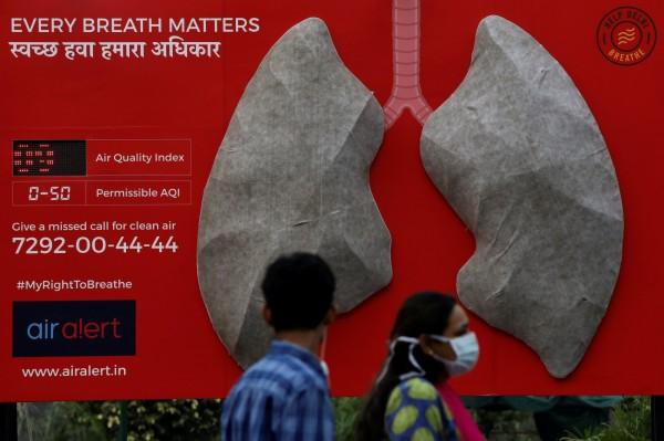 人工肺在實驗開始兩天已從雪白色驟變為灰色。(法新社)