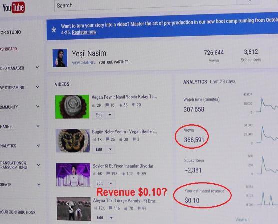 阿格達姆曾抱怨自己的YouTube頻道有30多萬閱覽量,廣告收益卻僅只0.1美元。(圖片擷取自紐約郵報)