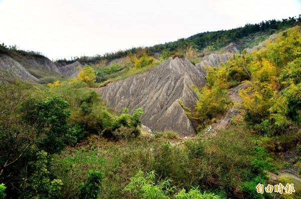 龍崎掩埋場計畫設置在月世界地景中,爭議不斷。(資料照,記者吳俊鋒攝)