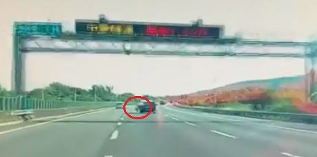 國道3號南下田寮交流道發生一起豬隻跳車意外,有目擊者將豬跳車的完整過程分享到網路上,驚呼「是豬!爬出來跳車的豬!」(圖擷取自臉書)