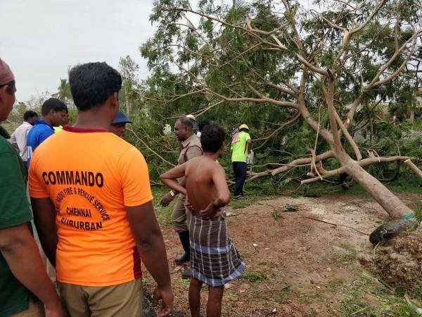 氣旋將當地近5千棵樹木連根拔起。(路透)