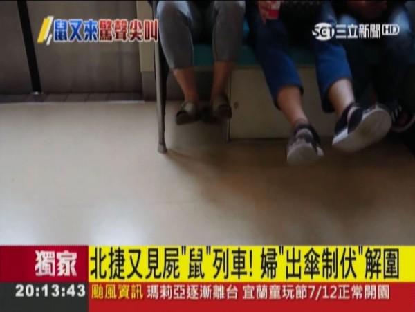一隻灰色老鼠卻在車廂內到處流竄,甚至鑽到乘客的椅子底下,讓一些乘客嚇得把腳抬高不敢放下。(圖擷自三立新聞)