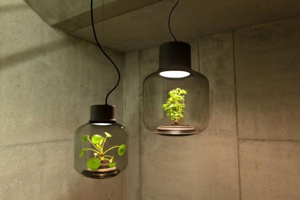 德國設計團隊推出「植物燈」,不需要澆水及日照,燈罩內的植物生態系就能持續綠美化環境。(圖擷取自Studio We Love Eames臉書)