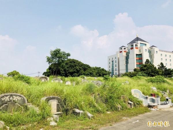 內政部考慮放寬「非都市土地使用管制規則附表一」,未來公墓內也可望設置太陽能發電事業。(資料照,記者蔡文居攝)
