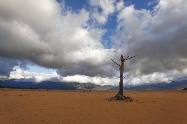 南非大城開普敦面臨缺水危機。(歐新社)
