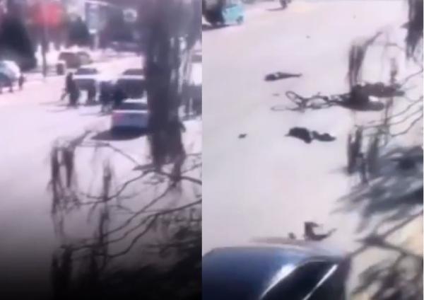 男子駕車衝撞學童路隊,釀至少5死。(合成照,擷取自YouTube)