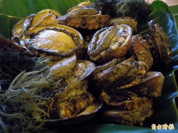 60歲莊姓攤販涉嫌將冷凍非洲寬口渦螺肉,標示為南美洲鮮生鮑魚,以每顆800元販售,辯稱「鮑魚也是一種螺肉,在台灣就叫鮑魚」。鮑魚示意圖。(資料照)