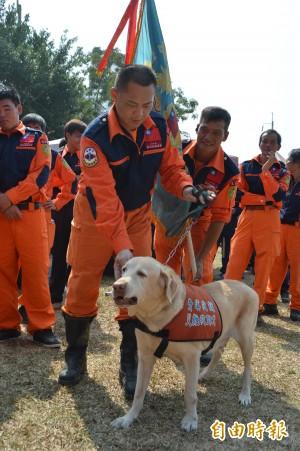 民間救難團體校閱 搜救犬LEO接受校閱吸睛