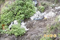 清水斷崖壁上掛垃圾 清除高難度