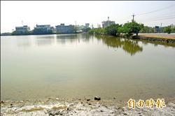 北門濕地保育與開發 求平衡