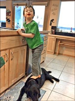 幼子踩狗被譙 培琳反譏歐巴馬吃狗肉