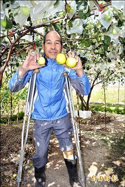 車禍撞斷腿 果農照樣耕作養家