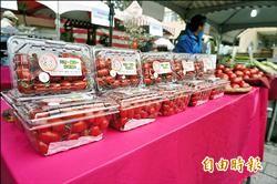 桃園在地農特產 夢想市集展售
