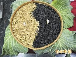 吃在地 西螺會農將契作黃豆製豆皮