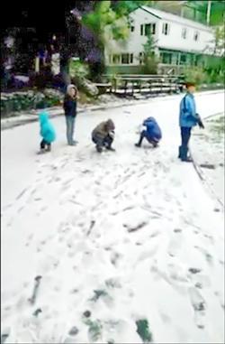 全台急凍 梨山、尖石也冰封
