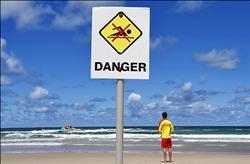 鯊魚咬腿 日衝浪客命喪澳洲