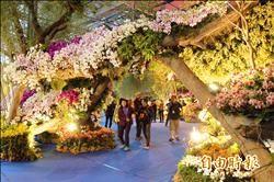 台南國際蘭展開園 賴清德當收票員