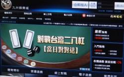 賭真大!九洲娛樂城台灣機房兩年半下注800億