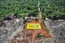 亞馬遜雨林 巴西擬納為國有