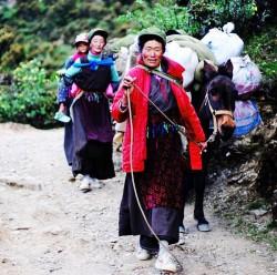 中國嚴控 藏人拿不到護照