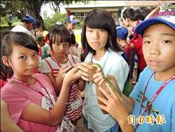 摸蛇碰蟾蜍 生態營學童沒在怕