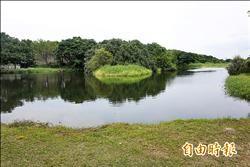 鹿角溪人工濕地雜草多 高灘處:讓鳥類復育