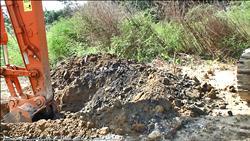 有害垃圾偷倒寶山 還種果樹遮掩