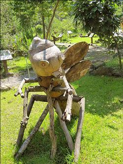 惠蓀木文化節 展現大自然魅力