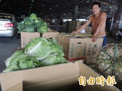 蔬菜價格回跌 下週可望平穩