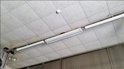 台酒屏東廠好髒「天花板發霉」