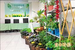 東京經驗 北市打造270處屋頂菜園