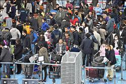日本人出國跨年 首選台灣、夏威夷