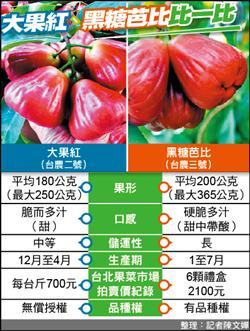 高雄新品種「大果紅」蓮霧 果大多汁價格高
