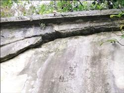 基隆大武崙砲台營房 頂拱龜裂位移