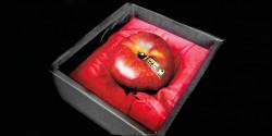 情人節開運毒蘋果 1顆1萬日圓