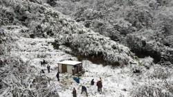新北三峽白雞山大雪 彷彿北國雪景