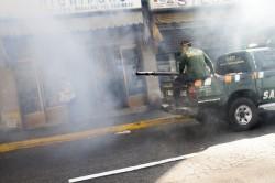 茲卡風雲緊急 泰國出現本土感染病例