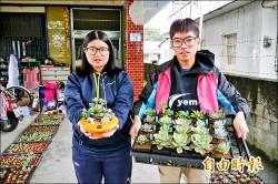 學生情侶創業 多肉植物客製化