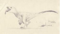日本福井新品種恐龍  全身覆蓋羽毛