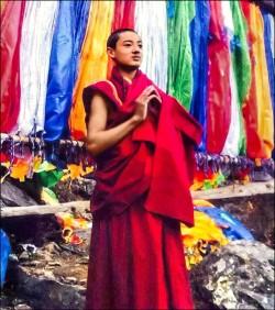 抗議中國暴政 又見藏人自焚