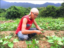 化學碩士當農夫 打造有機農場