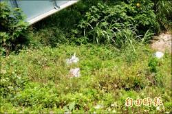 北港溪河堤公園 發現垃圾丟包