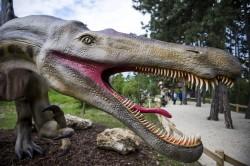加拿大古生物學家:恐龍可能有嘴唇