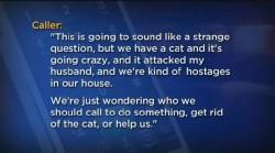 被貓「挾持」 美夫妻報警請求救援