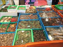 富基漁港將換裝 週末魚貨特賣